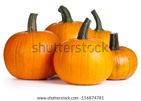 Pumpkins on white background. Autumn and halloween composition