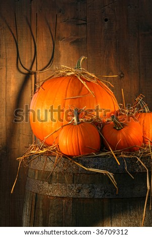 Pumpkins on wine barrel with pitch fork - stock photo