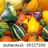 pumpkins still life - stock photo