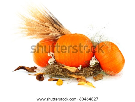 Pumpkins still life with wheat & dry leaves isolated on white - stock photo