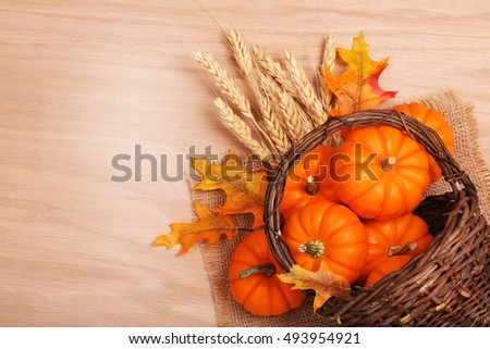 Pumpkins with Basket and Ears of Wheat on table. Harvest