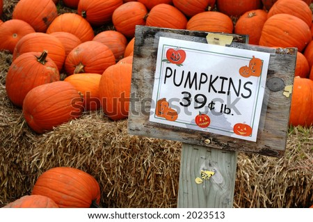 Pumpkins with price sign - stock photo