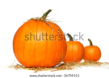 Pumpkins with straw on white background - stock photo