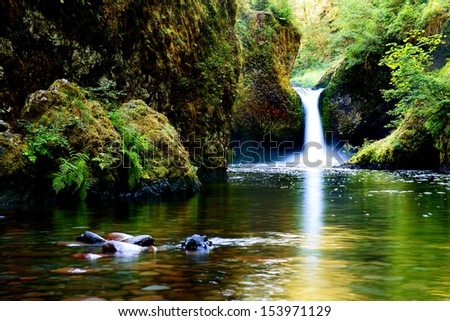 Punch Bowl Falls is a waterfall on Eagle Creek in the Columbia River Gorge    - stock photo
