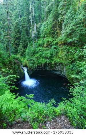 Punch bowl waterfall is located in Oregon in the Columbia river gorge area. - stock photo