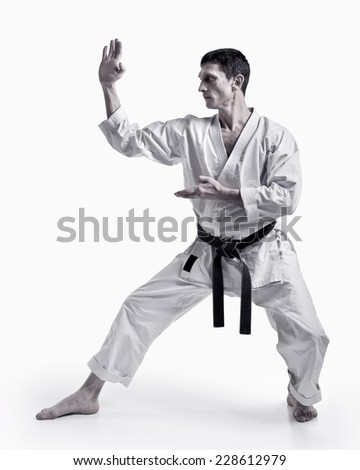 punch.figure in the karate fighting stance on a white background.hand-to-hand fighting Black-and-white image - stock photo