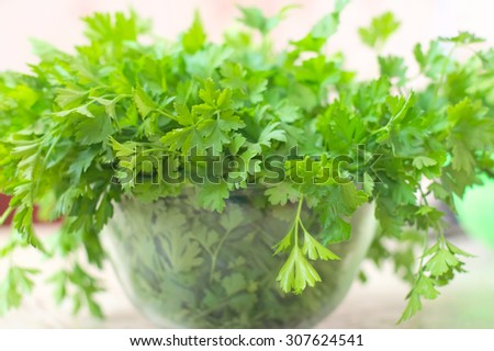 punch fresh herb in the glass soup plate