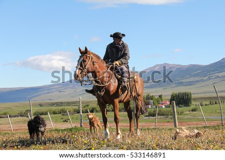 PUNTA ARENAS, CHILE-NOV. 15, 2012: Outside Punta Arenas on the pampas of Patagonia, a lonely gaucho rides the fence line of a sheep ranch while he watches over his herd.