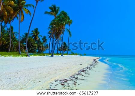 Punta Cana in Dominican Republic : beaches and jungle - stock photo