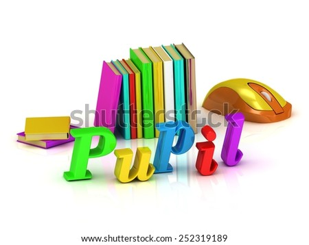 Pupil inscription bright volume letter and textbooks and computer mouse on white background - stock photo