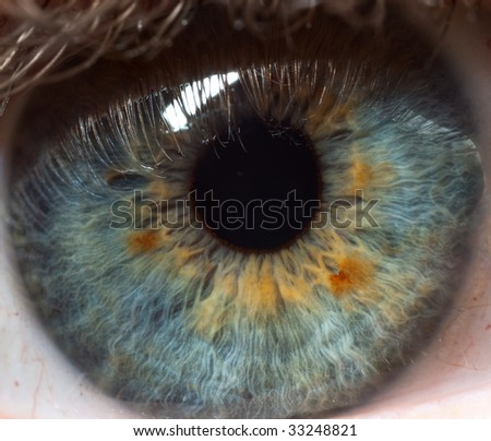 Pupil of human eye - stock photo