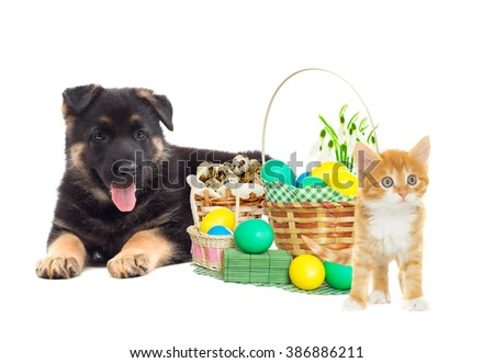 puppy and Kitten and easter set