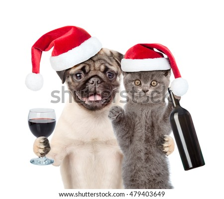 Puppy and kitten in red santa  hats holding a bottle of red wine and wineglass. isolated on white background