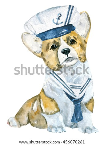 Puppy. Dog Welsh corgi, marine style. Hand-painted watercolor