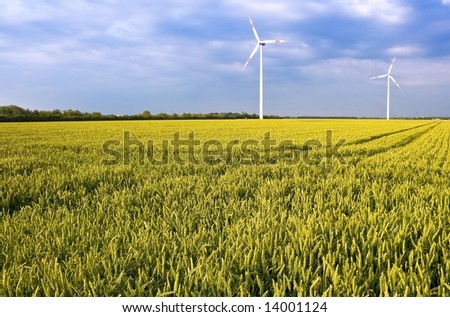 Pure energy - windmills in a wheat field