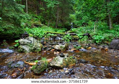 Pure mountain creek in deep woods - stock photo