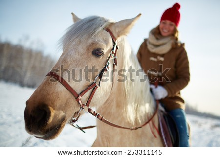 Purebred horse with young woman riding it in rural environment - stock photo