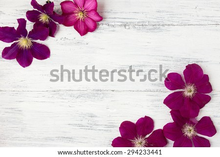 Purple clematis flowers on a wooden background
