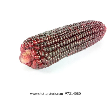 Purple corn on a white background