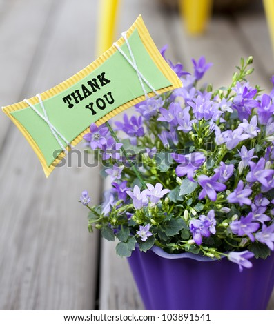 purple flower pot with flowers and a thank you note - stock photo