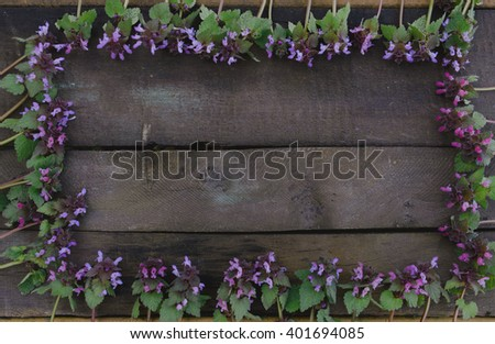 Purple flowers on wooden board forming a frame - flat lay