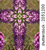 purple foxglove; kaleidoscope cross - stock photo