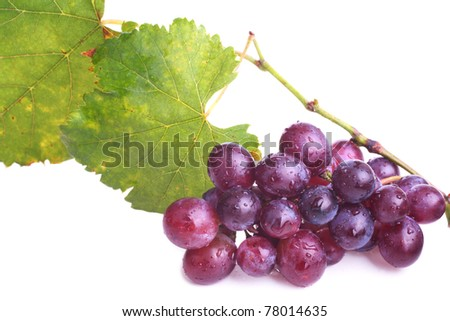 Purple grapes cluster with leaves (and water drops) on white - stock photo