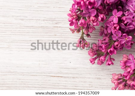 Purple lilac on a wooden background. Studio photography. - stock photo