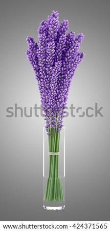 purple lupine flowers in glass vase isolated on gray background. 3d illustration