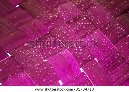 Purple network leaf with rain droplets - stock photo