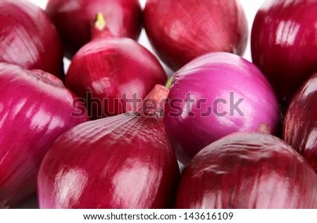 Purple onion close-up - stock photo