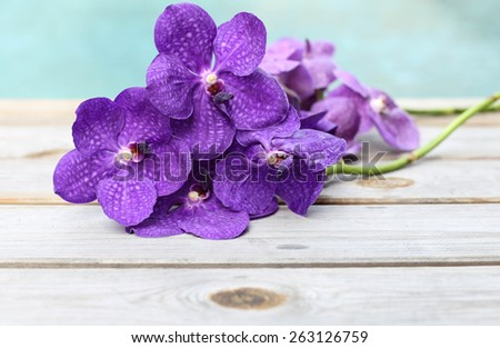 Purple orchid flower on wood background by swimming pool - stock photo