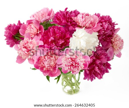 Purple, pink and white peony bunch in vase isolated on white background - stock photo
