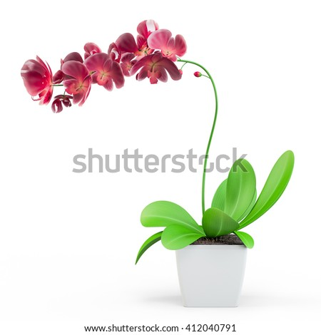 Purple, pink branch orchid flowers with green leaves, white vase, Orchidaceae, Phalaenopsis known as the Moth Orchid, abbreviated Phal. White background. 3D Rendering, 3D Illustration. - stock photo