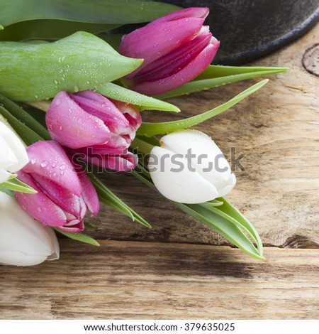 purple tulip spring concept on vintage tray and wooden table - stock photo