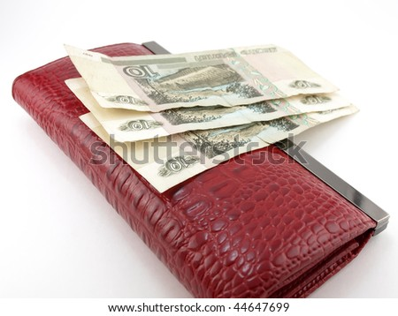Purse and money