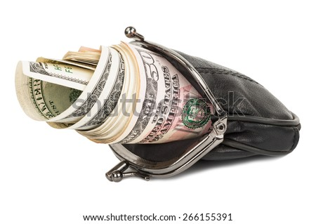 Purse with the money - stock photo