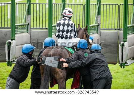 Pushing Race Horse into the Starting Gate - stock photo