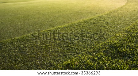 Putting Green close up - golf course - stock photo