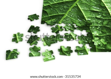 Puzzle of a leaf - stock photo