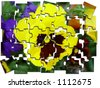 puzzle yellow pansy heartsease - stock photo