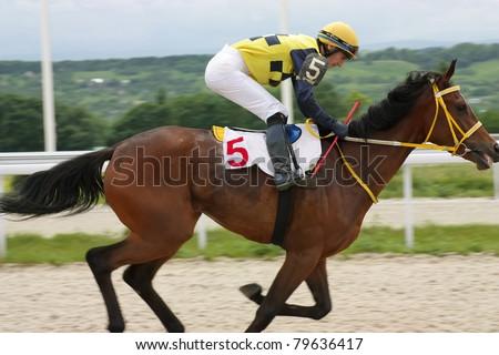 PYATIGORSK, CAUCASUS, RUSSIA - JUNE 19: Bay mare Flores and jockey Timur Guseinov compete and win the Letni prize on June 19, 2011 in Pyatigorsk, Caucasus, Russia. - stock photo