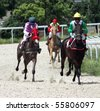 "PYATIGORSK, RUSSIA  - JUNE 20: The race for the prize of the ""Sprint""; June 20; 2010 in Pyatigorsk; Caucasus; Russia. - stock photo"