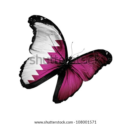 Qatari flag butterfly flying, isolated on white background - stock photo