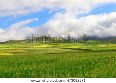 Qilian Mountains scenery