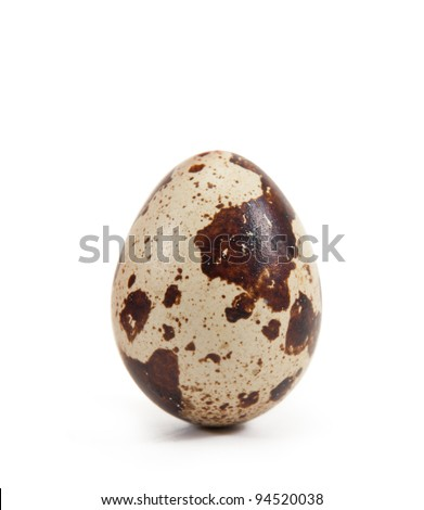 quail egg.isolated on a white background - stock photo
