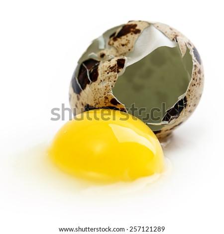 quail egg yolk protein Isolated on white background - stock photo