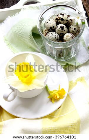 Quail eggs and spring flower for Easter holidays