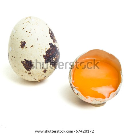 Quail Eggs and yolk  from low perspective isolated on white. - stock photo