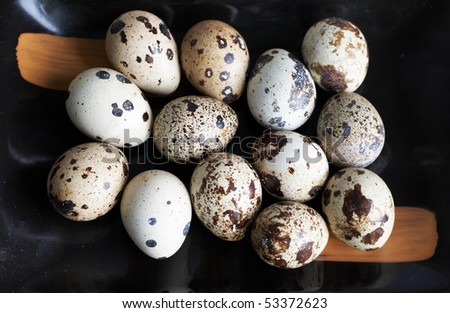 Quail eggs close-up - stock photo